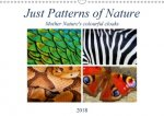 Just Patterns of Nature 2018