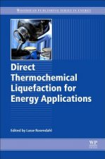DIRECT THERMOCHEMICAL LIQUEFAC
