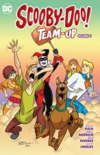 SCOOBY-DOO TEAM-UP VOL 4