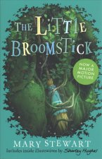 Little Broomstick