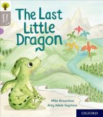 Oxford Reading Tree Story Sparks: Oxford Level 1: The Last Little Dragon