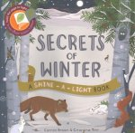 Shine a Light: Secrets of Winter