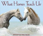 What Horses Teach Us 2018 Box Calendar