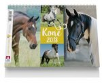 Koně - stolní kalendář