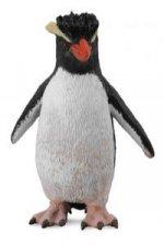 Pingwin rockhopper