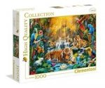 Puzzle High Quality Collection Mystic Tigers 1000