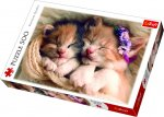 Puzzle Śpiące kotki 500