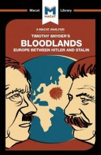 Analysis of Timothy Snyder's Bloodlands