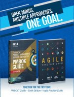 guide to the Project Management Body of Knowledge (PMBOK guide) & Agile practice guide bundle