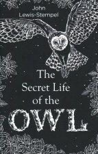 Secret Life of the Owl