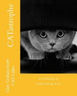 Catastrophe: A Catalog of Captivating Cats and More Cats