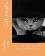Catastrophe: A Catalog of Capitivating Cats - With Black and White Photos