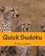 Quick Sudoku: Fast, Fun, and Easy Sudoku Puzzles