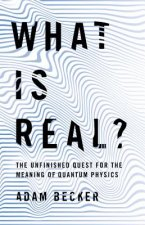 What Is Real?: The Unfinished Quest for the Meaning of Physics
