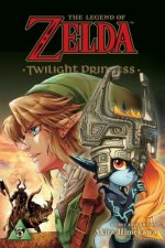 Legend of Zelda: Twilight Princess, Vol. 3