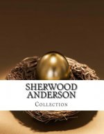 Sherwood Anderson, Collection