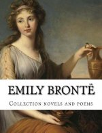 Emily Bronte, Collection Novels and Poems