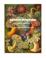 Designs in Nature: the incredible art of Ernst Haeckel
