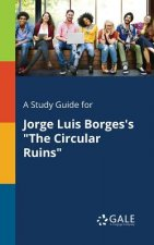 Study Guide for Jorge Luis Borges's The Circular Ruins