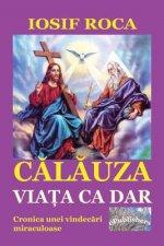 Calauza: Viata CA Dar: Cronica Unei Vindecari Miraculoase