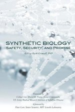 Synthetic Biology: Safety, Security, and Promise