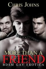 More Than A Friend: BDSM Gay Erotica