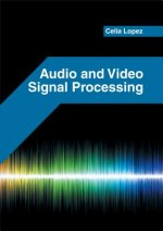 Audio and Video Signal Processing