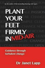 Plant Your Feet Firmly in Mid-Air: Leading Through Turbulent Change