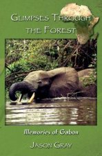 Glimpses Through the Forest: Memories of Gabon