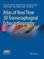 Atlas of Real Time 3D Transesophageal Echocardiography
