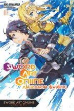 Sword Art Online, Vol. 13 (light novel)