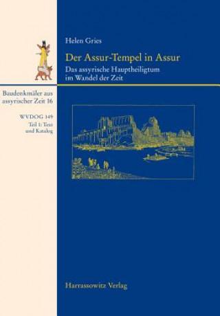 Der Assur-Tempel in Assur