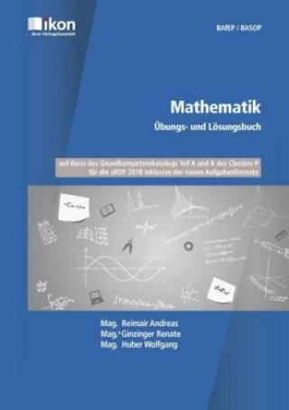 Mathematik - Übungs- und Lösungsbuch BAfEP/BASOP
