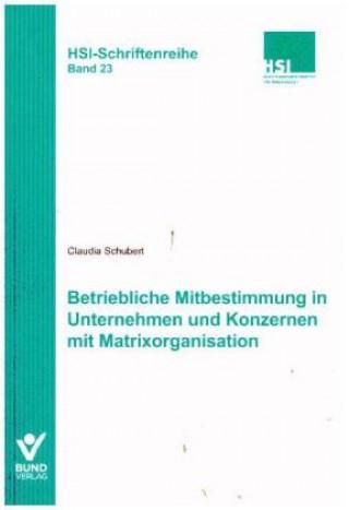 Betriebliche Mitbestimmung in Unternehmen und Konzernen mit Matrixorganisation