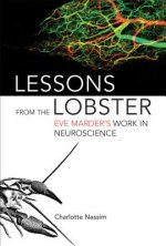 Lessons from the Lobster
