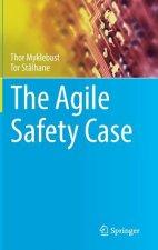 Agile Safety Case