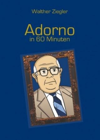 Adorno in 60 Minuten