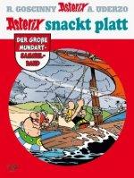 Asterix snackt Platt