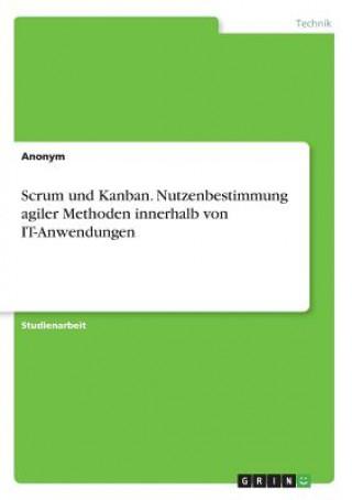 Scrum und Kanban. Nutzenbestimmung agiler Methoden innerhalb von IT-Anwendungen