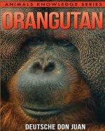 Orangutan: Beautiful Pictures & Interesting Facts Children Book About Orangutans