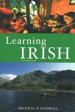 Learning Irish