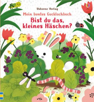 Mein buntes Gucklochbuch: Bist du das, kleines Häschen?