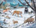 Puzzle MAXI - Sibiř a krajina Severovýchodní Asie/66 dílků