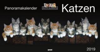 Katzen, Panoramakalender 2019