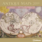 2019 ANTIQUE MAPS 30 X 30 GRID CALENDAR
