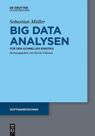 Big Data Analysen
