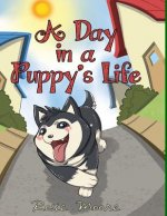 A Day In a Puppy's Life