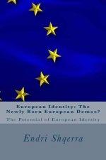 European Identity: The Newly Born European Demos?: The Potential of European Identity