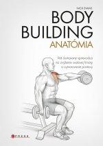 Bodybuilding Anatómia