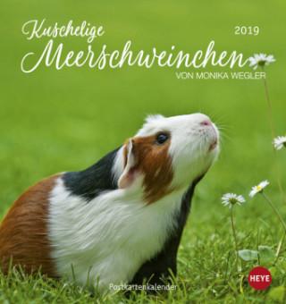 Kuschelige Meerschweinchen Postkartenkalender 2019